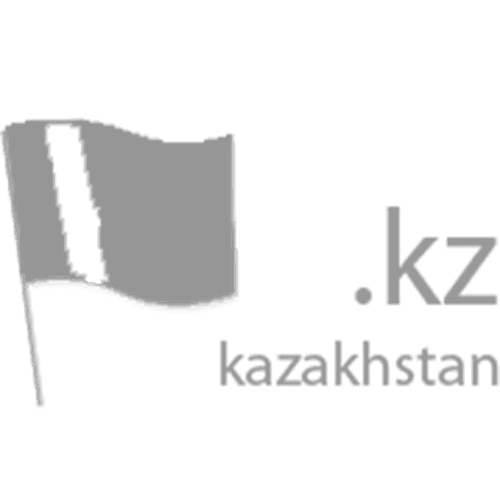 Register domain in the zone .kz